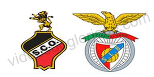 Golos Olhanense 0 vs 2 Benfica – 25ª Jornada